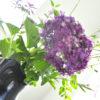 紫陽花 と コストコの海鮮ちらし